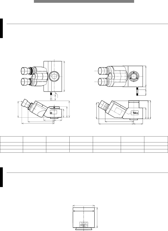 Olympus Microscope Widefield trinocular observation tubes