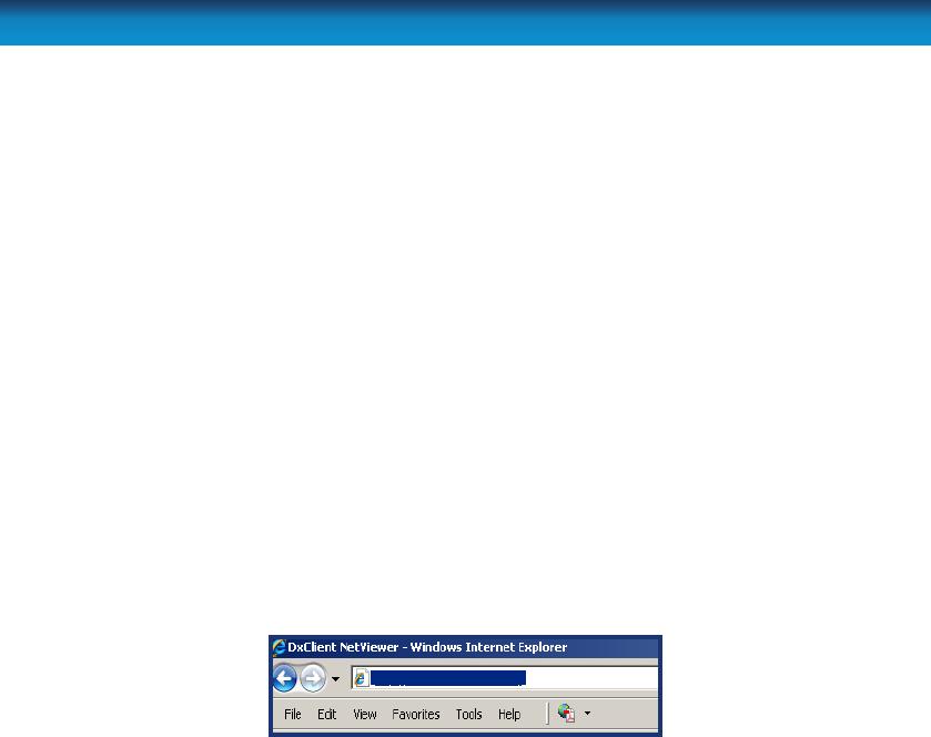 Swann H 264 Remote Access via Internet Explorer