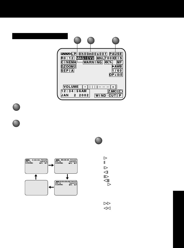 Replacement by Panasonic Panasonic PV-DV202 Camcorder 60 Minutes Mini DV Video Cassette